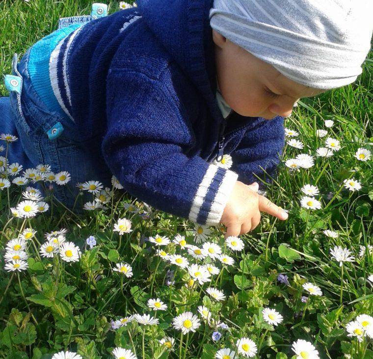 Plazenje po travi ali dvorišču primerno?