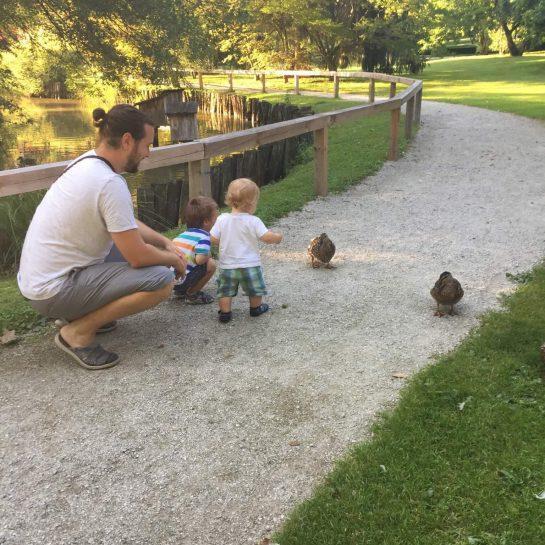 Izlet v Arboretum – Volčji potok