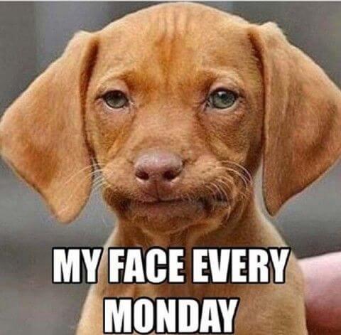 Sovražim ponedeljke