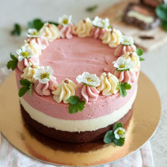 Neapolitanska torta ali torta planica